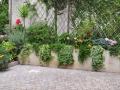 18-giardino