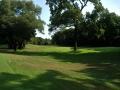1-golf