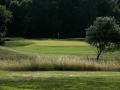 4-golf