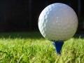 6-golf